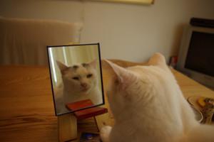 鏡を使ったボイトレで、劇的な効果が!!